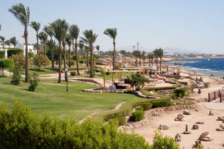 Tropical beach in Egypt resort.