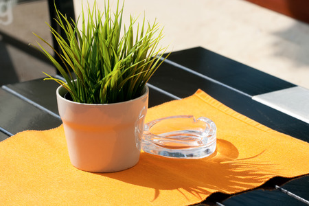 Street cafe. Flowerpot with growing grass on the table near the ash tray.