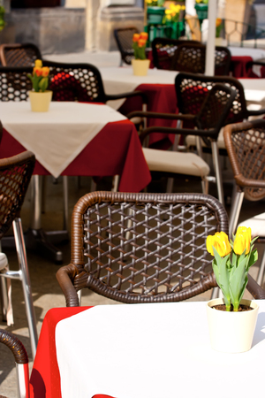 flowerpots: Street cafe. Flowerpots with yellow tulips on the tables.