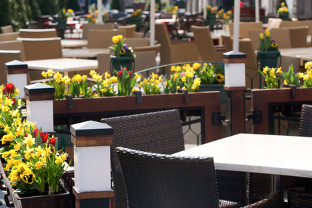 Street cafe. Flowerpots with yellow tulips and narcissus near the tables. Stock Photo
