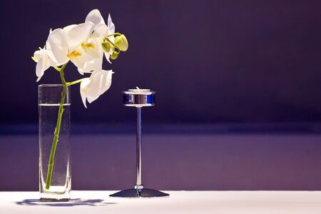 orchid house: Luxury restaurant decor with plants and a candlestick. Stock Photo