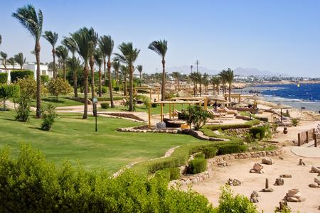 Tropical beach on Egypt resort