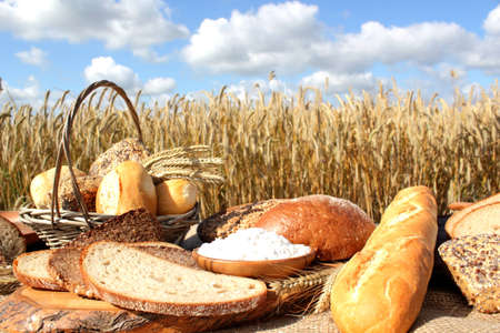 Bread and grain on a sunny summer day. photo