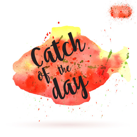 Phrase, Catch of the day, on watercolor background. Unique postcard, banner or poster with hand painted fish shape and typographic lettering. Modern calligraphy concept.