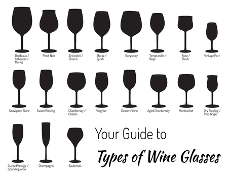 pinot grigio: Mega collection of hand drawn wine glasses. Illustration