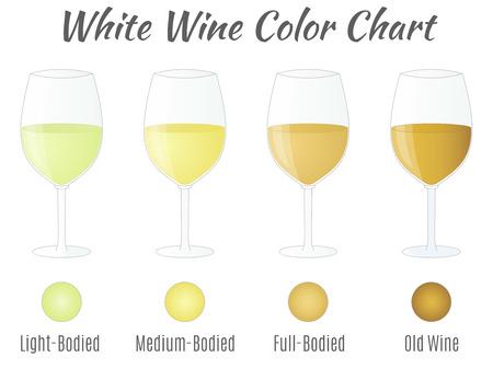 Witte wijn kleurenkaart. Hand getrokken wijnglazen.