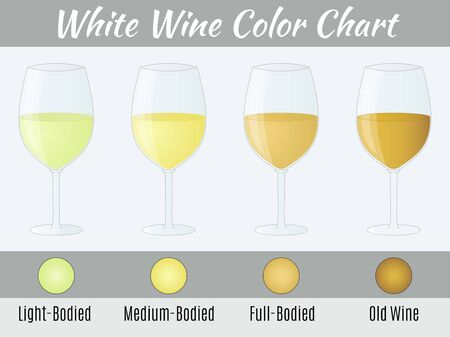 color chart: White wine color chart. Hand drawn wine glasses.
