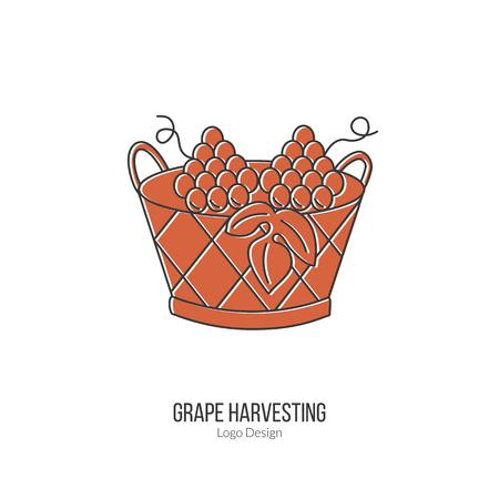 winemaking: Harvesting basket with grapes. Illustration