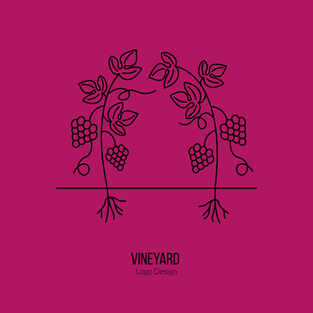 winemaking: Growing grapes. Illustration