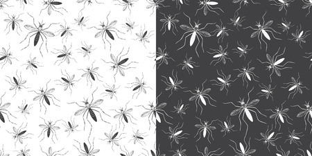 aedes: Set of seamless patterns with aegypti aedes mosquitos. Texture of insects. Healthcare concept. Warning about dangerous Zika virus. Black design elements isolated on white and black background.