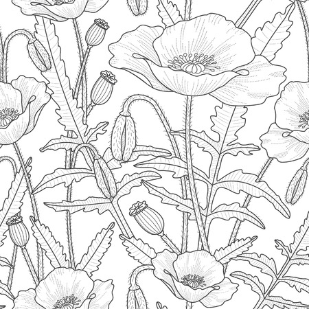 Elegant floral seamless pattern with beautiful poppy flowers leaves, buds and poppy heads. Black and white flourish background. Thin line style. 矢量图像