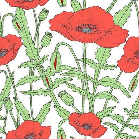 Elegant floral seamless pattern with beautiful poppy flowers leaves, buds and poppy heads. Colorful, red and green flourish background. Flat style.