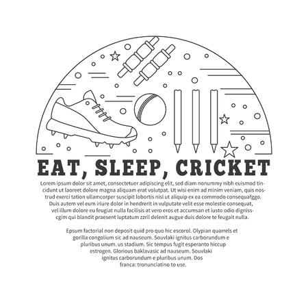 mania: poster with cricket symbols and objects in circle with place for text. Illustration