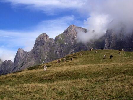 sargans: Gonzen mountain
