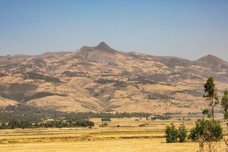 Addis Ababa, Ethiopia, January 30, 2014, Chickpea farming in Rural Ethiopia, Dry landscape
