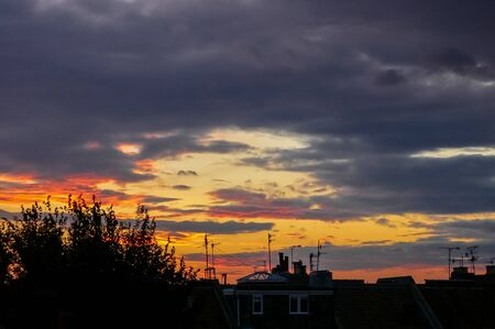 Silhouetted trees and tv aerials on rooftops in a English town at sunset