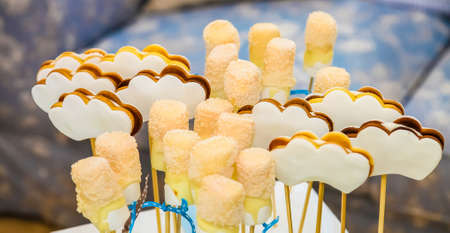 Chocolate and caramel with coconut flake lollipops for catering at gala dinner banquet event Фото со стока