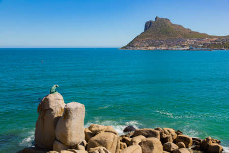 Cape Town, South Africa - March 17, 2021: Bronze Leopard statue on rock in Hout Bay Cape Town, South Africa