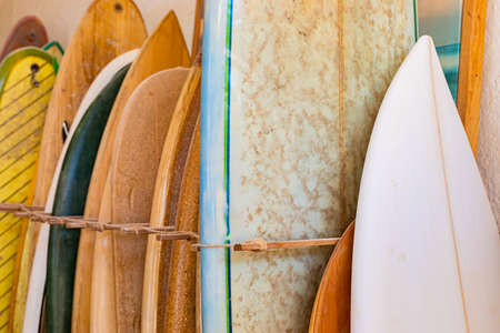 Row of retro vintage surfboards lined up in a local surf shop