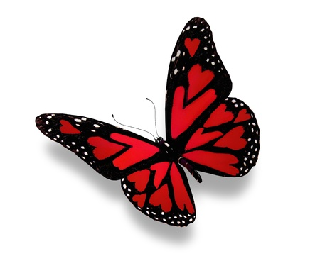 heart with wings: Red butterfly with hearts on wings, isolated on white Stock Photo