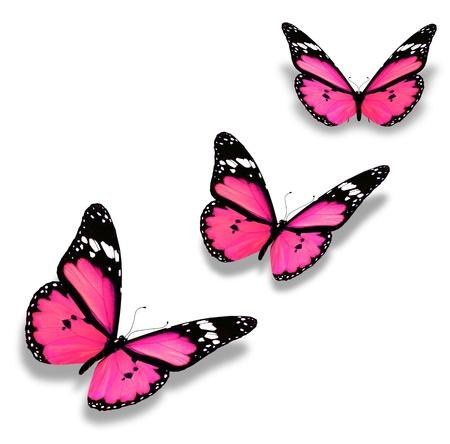 mariposas volando: Tres mariposas de color rosa, aislados en blanco Foto de archivo