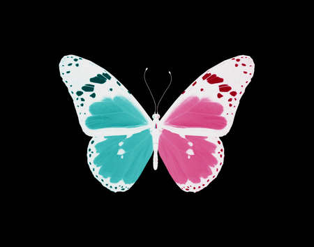 Butterfly, concept of love and relations photo