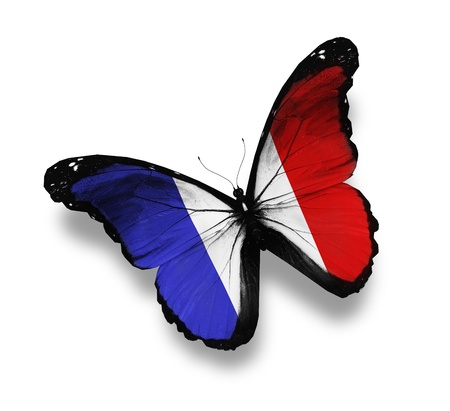 flag of france: French flag butterfly, isolated on white
