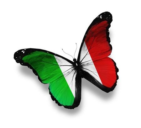 bandera italiana: Mariposa bandera italiana, aislados en blanco