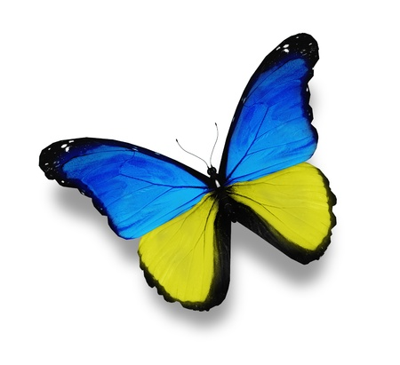 ukraine flag: Ukainian flag butterfly, isolated on white