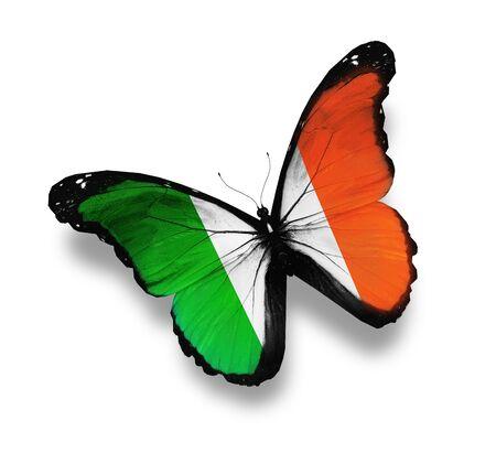 ireland: Irish flag butterfly, isolated on white
