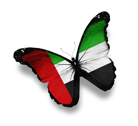 UAE flag butterfly, isolated on white photo