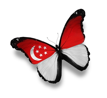 singaporean flag: Singaporean flag butterfly, isolated on white