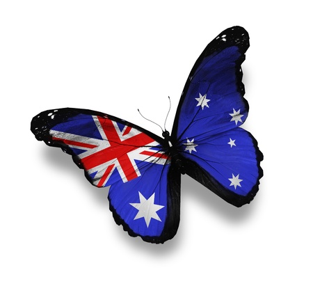 Australian flag butterfly, isolated on white Stock Photo