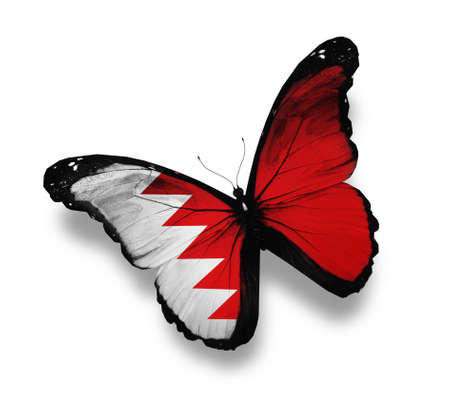 Bahraini flag butterfly, isolated on white photo