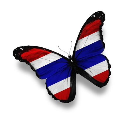 Thai flag butterfly, isolated on white photo