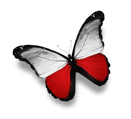 bandera de polonia: Polaco pabell�n de mariposas, aislado en blanco Foto de archivo