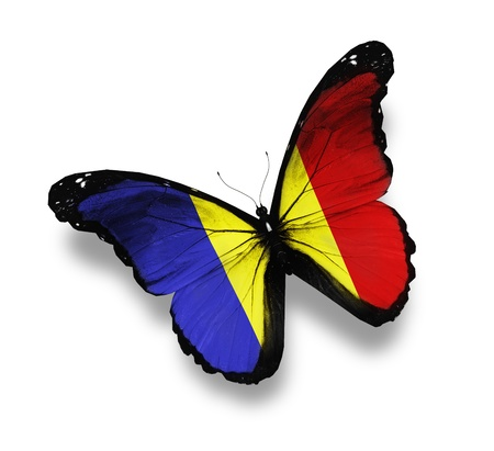 romania: Romanian flag butterfly, isolated on white