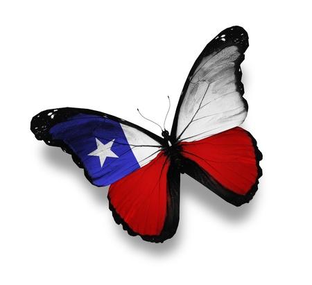 chilean flag: Mariposa bandera chilena, aislado en blanco Foto de archivo