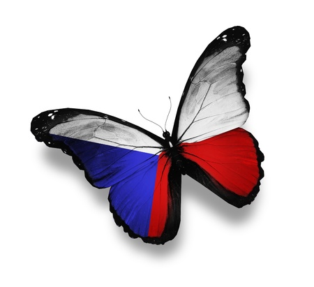 Czech flag butterfly, isolated on white Stock Photo - 12676296