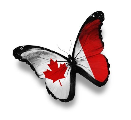 canada: Canadian flag butterfly, isolated on white