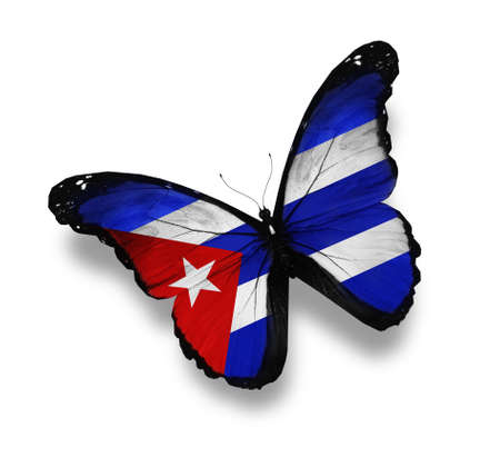 cuban: Cuban flag butterfly, isolated on white Stock Photo