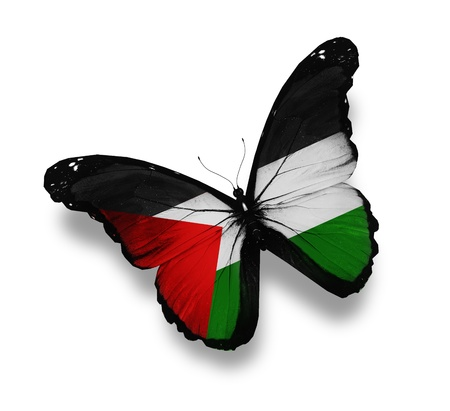 Palestinian flag butterfly, isolated on white Stock Photo