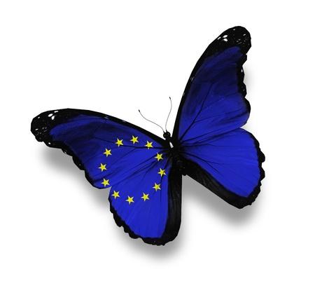 europeans: Bandiera dell'Unione Europea farfalla, isolato su bianco Archivio Fotografico