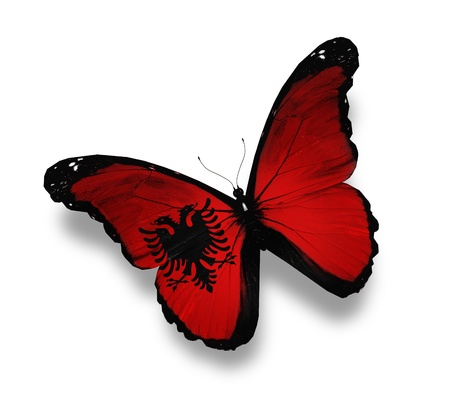 albanian: Albanian flag butterfly, isolated on white Stock Photo