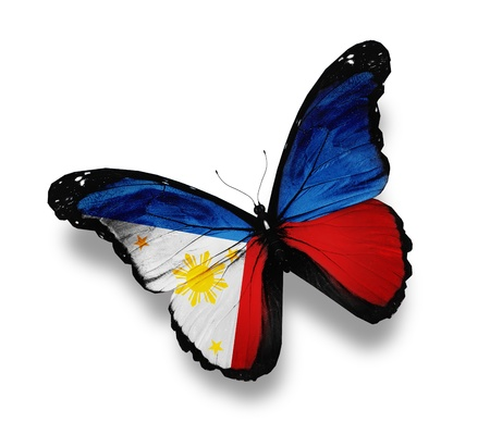 Philippine flag butterfly, isolated on white