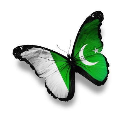 pakistani pakistan: Pakistani flag butterfly, isolated on white