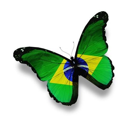 mariposas amarillas: Mariposa bandera brasile�a, aislado en blanco