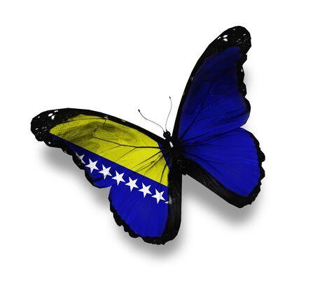 herzegovina: Flag of Bosnia and Herzegovina butterfly, isolated on white