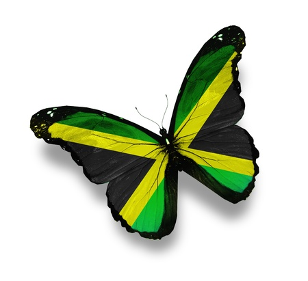 jamaican: Jamaican flag butterfly, isolated on white