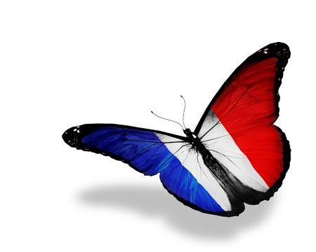Französisch Flagge Schmetterling fliegen, isoliert auf weißem Hintergrund